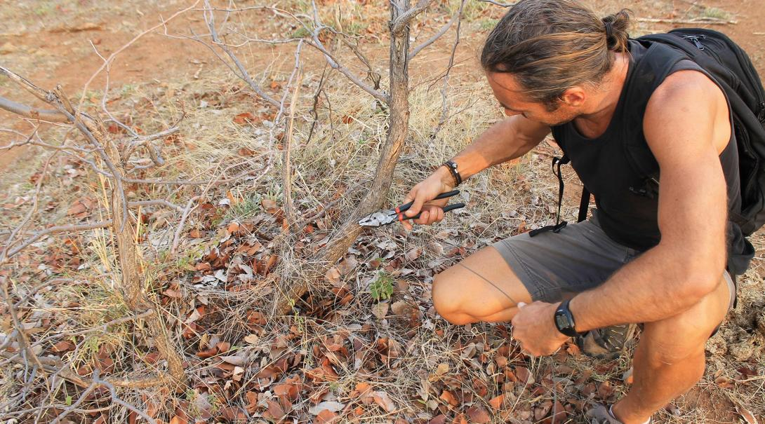 A volunteer helps with anti-poaching efforts at the Conservation project in Botswana